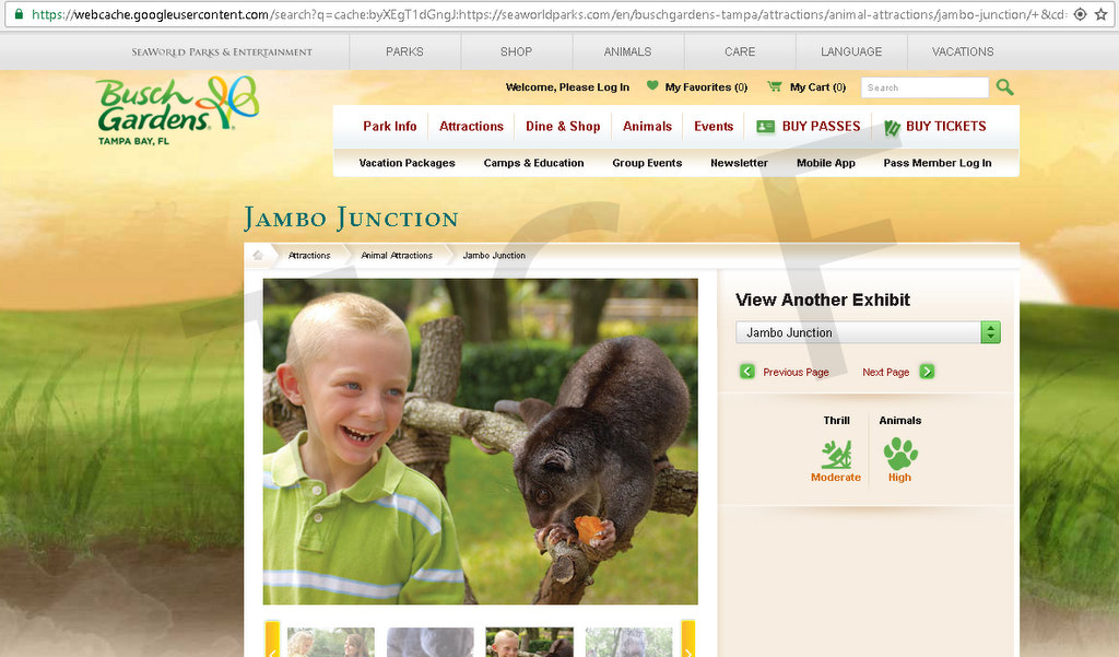A cached version of the Jambo Junction page from December 5, 2016