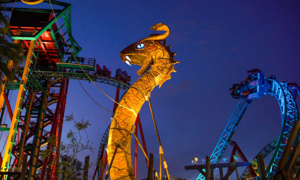 Summer Nights Reimagined At Busch Gardens Tampa Touring Central Florida