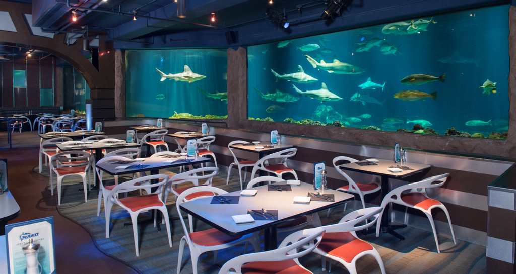 Sharks Underwater Grill The Fine Dining Restaurant At Seaworld Orlando Is Only Elishment Inside A Theme Park Paring In Visit S