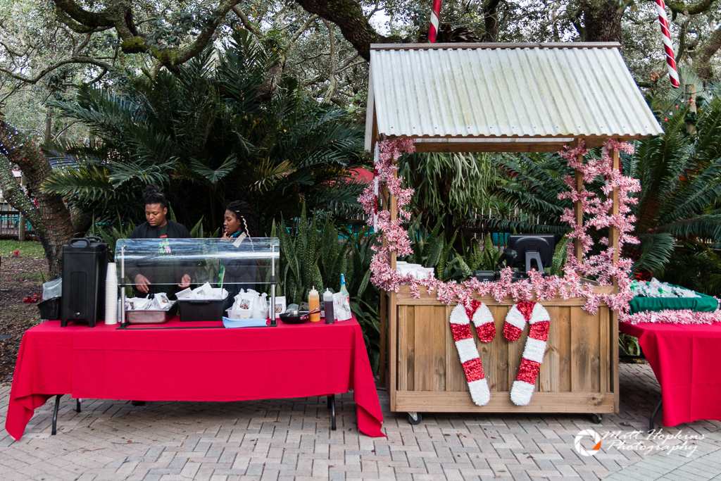 Lowry Park Zoo Christmas.Lowry Park Zoo Christmas In The Wild 2017 012 Touring